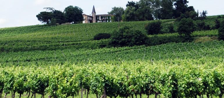Le vin fait partie du patrimoine français