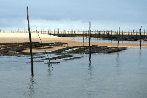 Parc à huîtres sur le banc d'Arguin (WS/Rue89 Bordeaux)