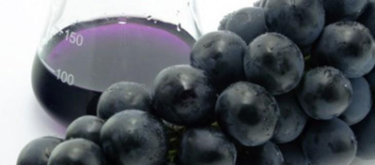60% des vins seraient pollués par les phtalates