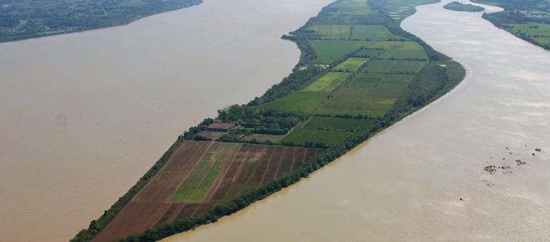 Estuaire de la Gironde : les îles refont surface