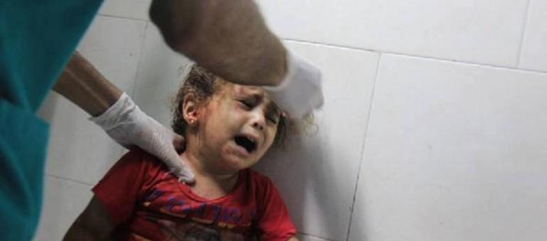 «Soutien à la Palestine et boycott d'Israël»