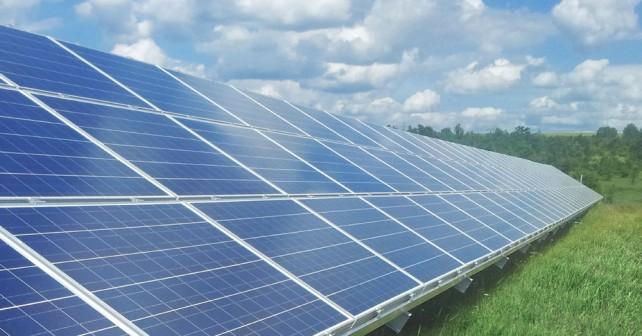 Des forêts coupées pour créer des parcs solaires : le renouvelable «quoi qu'il en coûte» ?