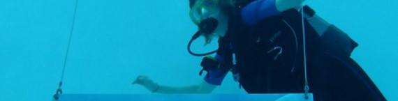 Au stade nautique de La Teste-de-Buch, on peut contempler des œuvres d'art sous l'eau, dans la fosse de plongée (DR).