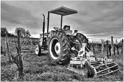 tracteur dans les vignes près de Fronsac (Photo Dominique Garcin-Geoffroy/flickr/CC)