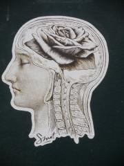 Cerveau de rose, cc Jeanne Menjoulet & Cie