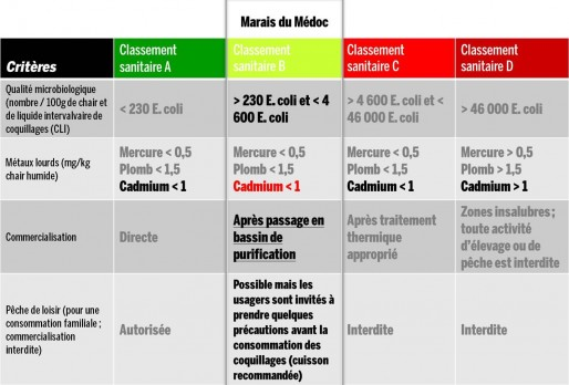 Tableau de classement des mollusques propres à la consommation.