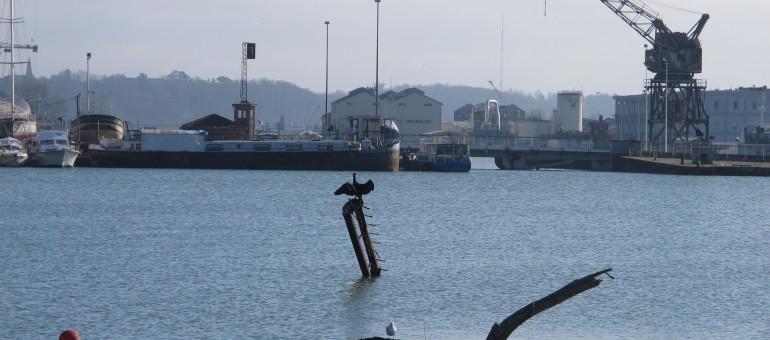 Les entreprises des Bassins à flot naviguent à vue