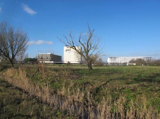 Groupama-Gan a des projets pour développer ses 15 hectares jouxtant le stade (SB/Rue89 Bordeaux)