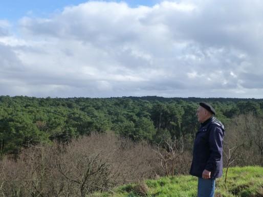 André Gousset, administrateur de l'Addufu, contemple la forêt usagère de l'autre côté de la route de Biscarosse (CB/Rue89 Bordeaux)