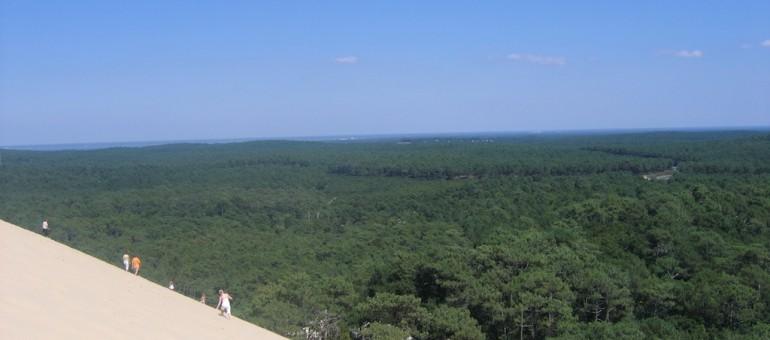 Qui veut racheter la Dune du Pilat et sa forêt ?
