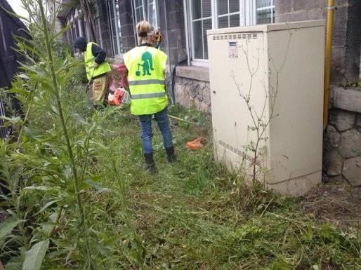 Travaux de désherbage menés par les jeunes Tapajeurs pour la Ville de Bordeaux (DR)