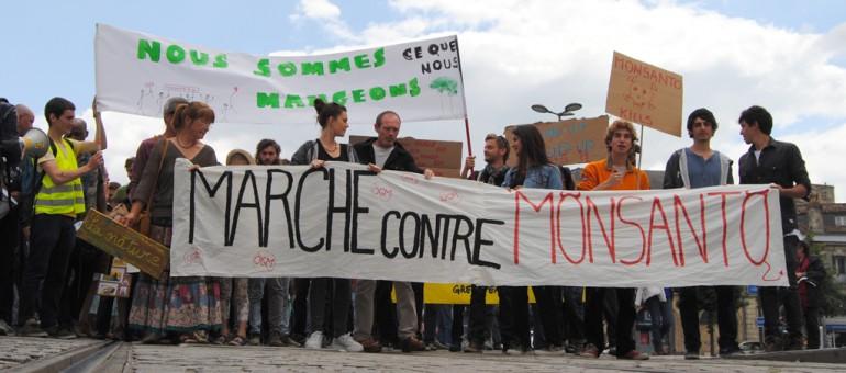 Bordeaux «ne veut pas de Monsanto»