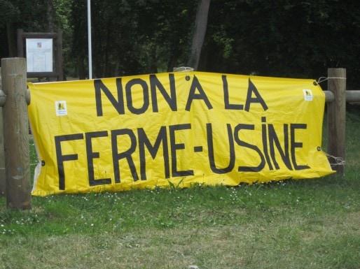 A Saint-Symphorien, le projet de ferme des 12000 porcs ne passe pas ( Aline Chambras)