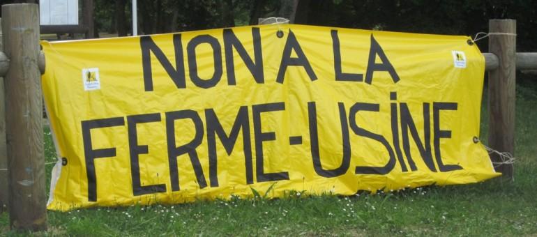 Manifestation à Bordeaux contre la ferme des 12000 porcs