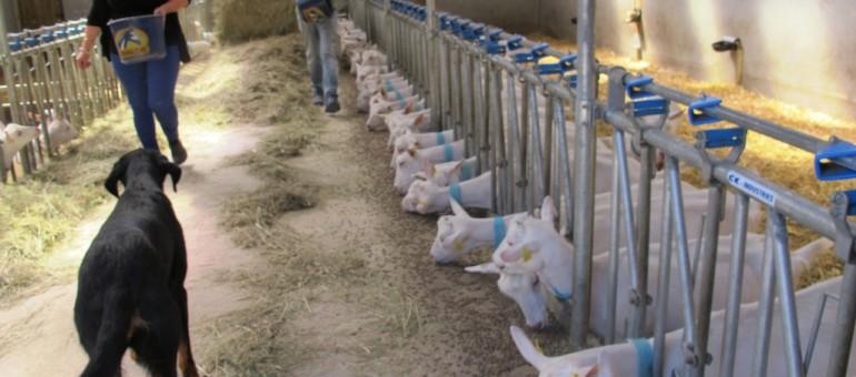 Les paysans bordelais peuvent-ils nourrir la métropole ?