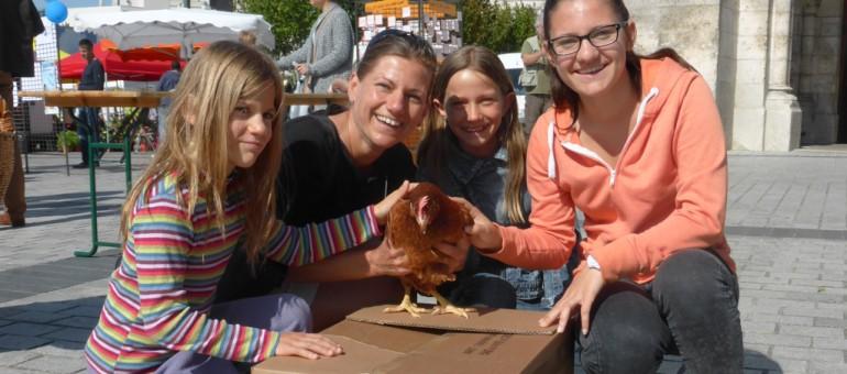 Bienvenue à Bordeaux Métro-poules