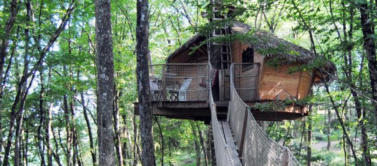 Passez des nuits insolites au fond des bois