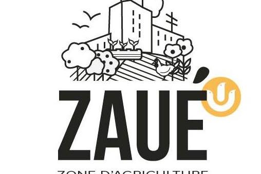 Darwin veut essaimer l'agriculture urbaine
