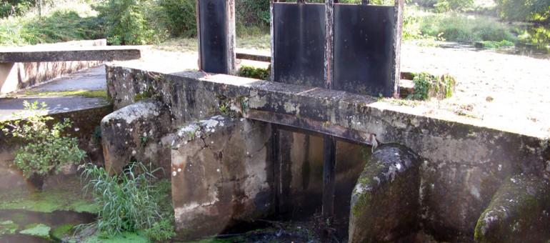 Mesures d'urgence après la pollution des eaux de la Jalle