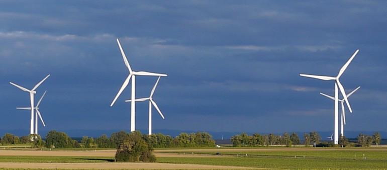 Le projet de parc éolien du Médoc suspendu, «des dizaines d'emplois sacrifiés»