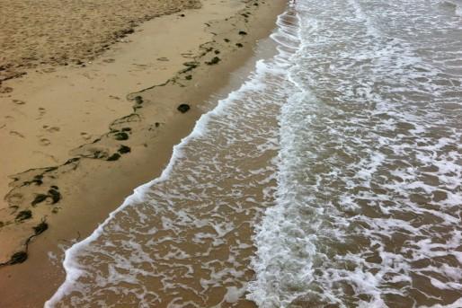 Surfrider Foundation veut sensibiliser le grand public à la protection du littoral (WS/Rue89 Bordeaux)