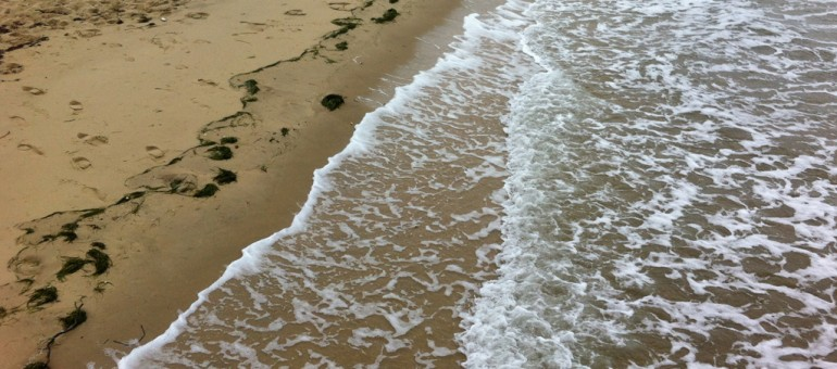 Surfrider met le «Cap sur le littoral» d'Aquitaine