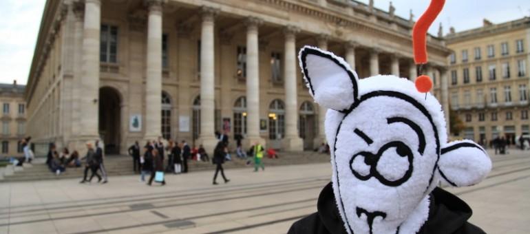 Whybook, le mouton rebelle défie Facebook