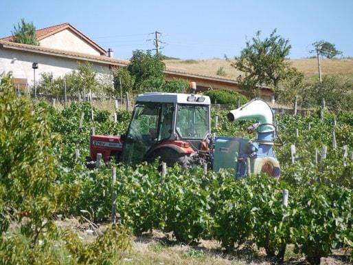 Traitement des vignes (Esby/Wikipedia)
