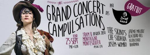 Affiche du Grand Concert des Campulsations (Design : Hugo Marchais)
