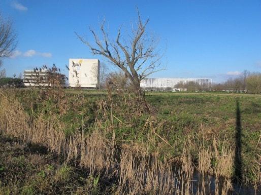 Les terrains de Gan à Bordeaux Nord (SB/Rue89 Bordeaux)
