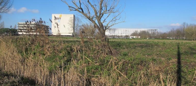 De petites maisons dans la prairie à Bordeaux Nord ?