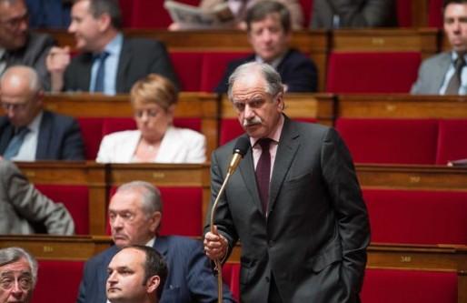 Le député-maire de Bègles Noël Mamère (DR)