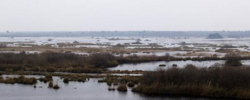 L'étang de Cousseau, une des réserves naturelles du département (ec-photos(graphies)/flickr/CC)