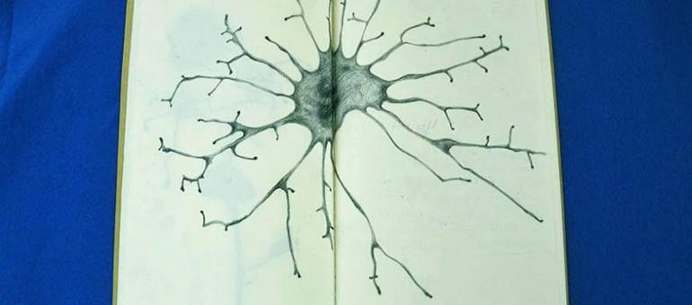 Rencontres : le vitiligo vu par l'art et la science
