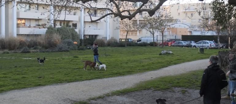 Bordeaux : les voisins du Jardin de ta soeur sont amers