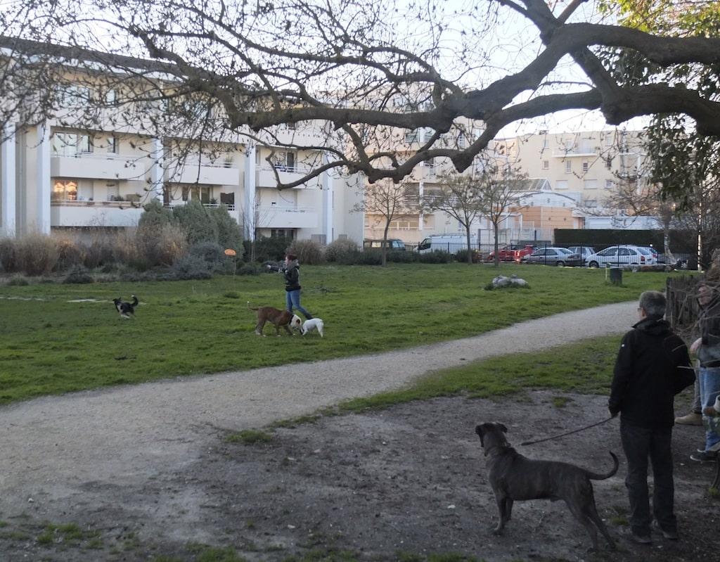 Bordeaux les voisins du jardin de ta soeur sont amers for Jardin bordeaux