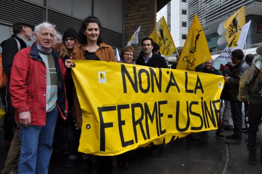 Une cinquantaine d'opposants à la ferme des 12000 porcs se sont retrouvés devant la Préfecture de Gironde (Xavier Ridon/Rue89 Bordeaux)