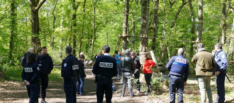 Bois de Thouars à Talence : l'accrobranche de la discorde