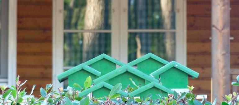 Ha-pa, vitrine pour l'habitat participatif en Aquitaine