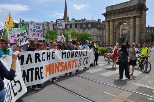 Deux milles personnes ont marché contre Monsanto à Bordeaux (Xavier Ridon/Rue89 Bordeaux)