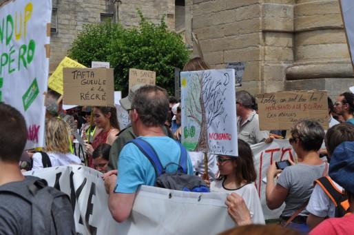 La marche contre Monsanto et Nuit Debout se sont rencontrés à Bordeaux (Xavier Ridon/Rue89 Bordeaux)