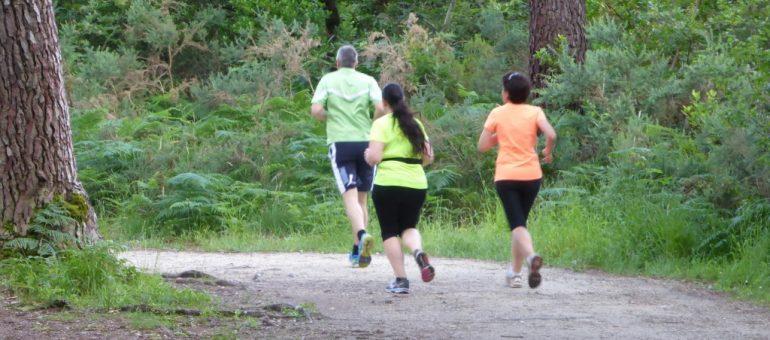 Running, crossfit, trail… où courir dans la métropole bordelaise ?
