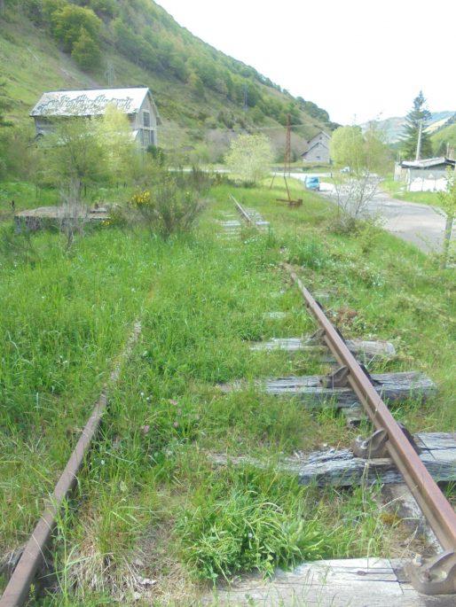 Au-delà de Bedous, les rails toujours en place sont recouverts par la végétation. (BG/Rue89 Bordeaux)