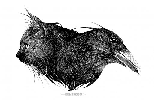Ravencat (Dessin : Ben Basso)