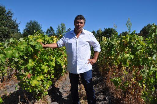 Alain Déjean, au milieu de ses vignes à Fargues en Gironde (Xavier Ridon/Rue89 Bordeaux)