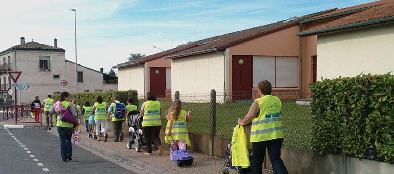 (3) Les pédibus à l'école de l'écomobilité