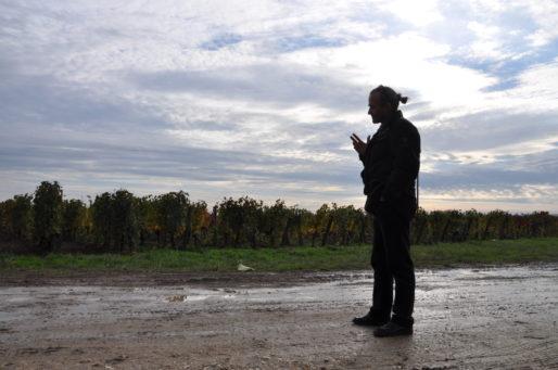Nicolas Despagne, viticulteur à Montagne (Xavier Ridon/Rue89 Bordeaux)