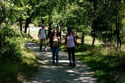 Ballade dans le parc du Cypressat (GPV)