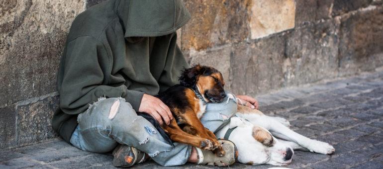 Le plan grand froid renforcé à Bordeaux pour les sans-abri