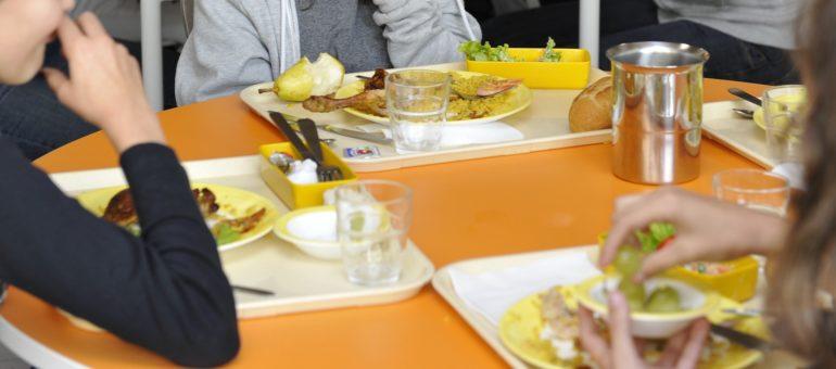 Des parents ne digèrent pas les assiettes en plastique à la cantine